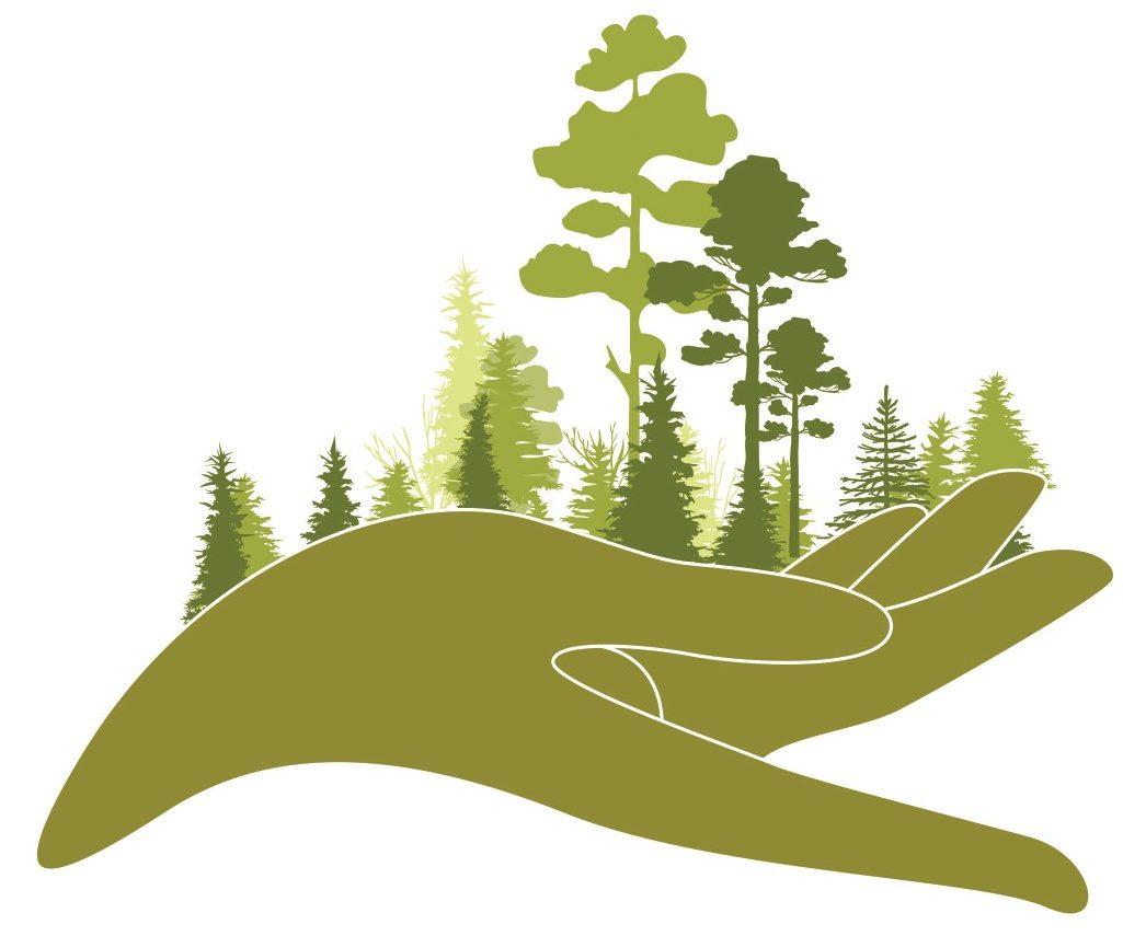 Semeurs de Forêts