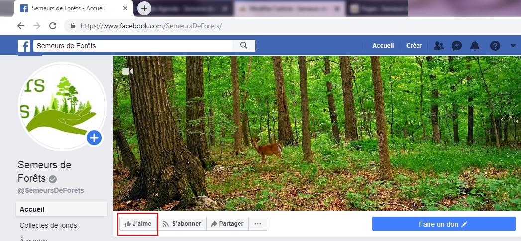 Likez Semeurs de Forêts sur facebook