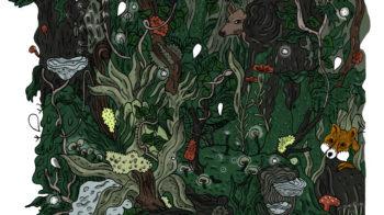illustration de Kämi Dobï